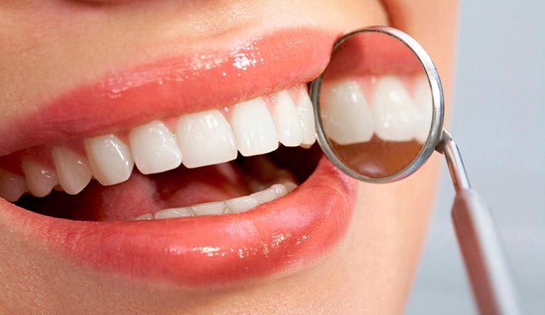 Зубы человека: анатомия, строение, функции